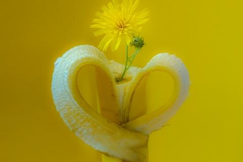 Pirjo Uimonen - Banaanin kukka